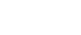 demo-palace-logo